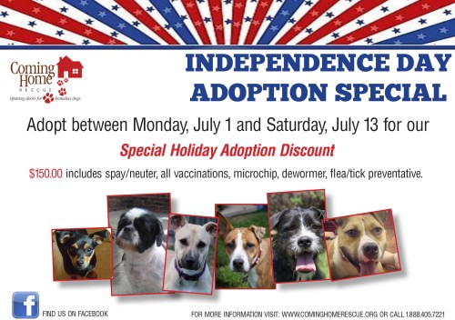Independence Day Adoptions