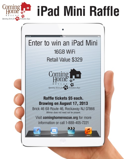 iPad Mini Raffle Flyer