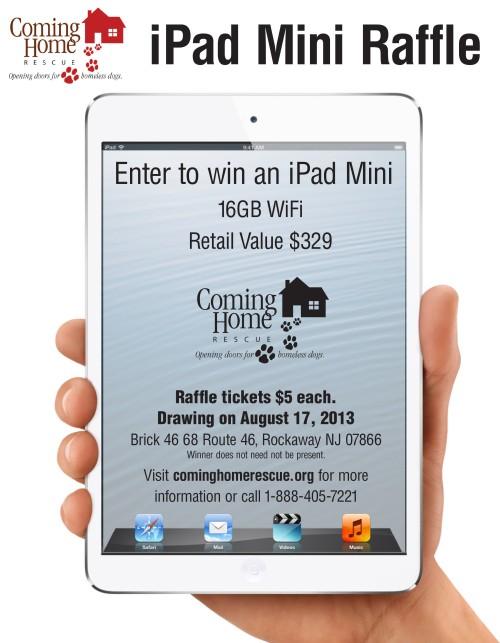 iPad Mini Raffle Flyer