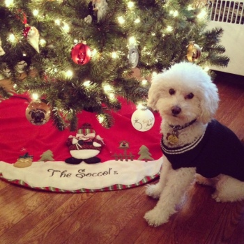 Brody Christmas