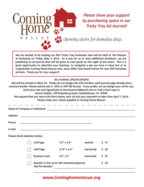 Tricky tray ad journal form REV-3