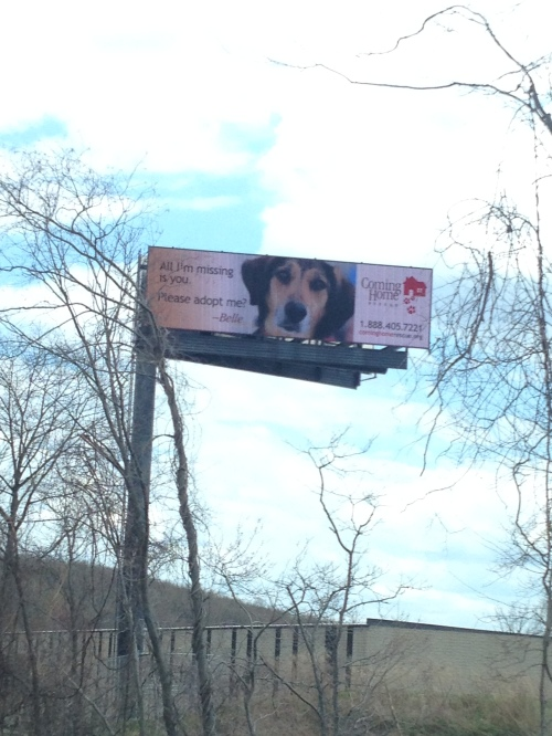 Billboard with Belle