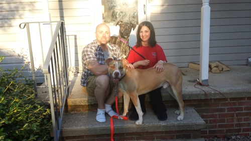 Finnegan (formerly Champ--in back) has a new family and a new brother Harry (also a rescue dog--in the front)