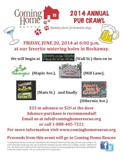 pub crawl flyer 2014 draft