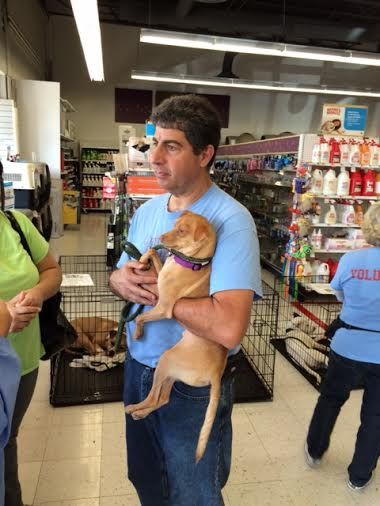 talking to adopters