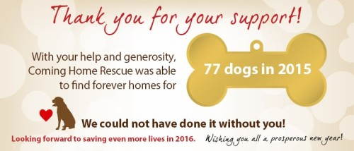 CHR 2015 adoptions